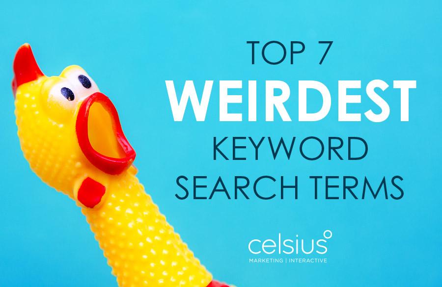 top 7 weirdest keyword search terms